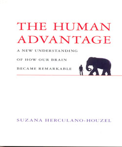The Human Advantage A New Understanding of How Our Brain Became Remarkable