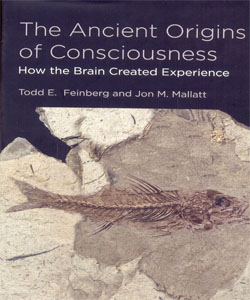 The Ancient Origins of Consciousness How the Brain Created Experience