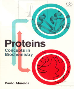 Proteins Concepts in Biochemistry