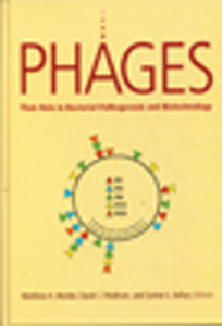 Phages: Their Role in Bacterial Pathogenesis and Biotechnology