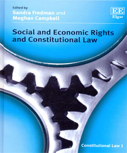 Social and Economic Rights and Constitutional Law